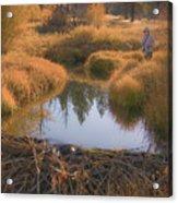 Secret Place Near Kennedy Meadows Where The Big Ones Bite Acrylic Print