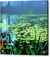 Secret Quiet Pond Acrylic Print