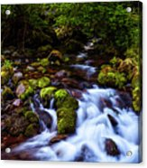Secret Stream Acrylic Print