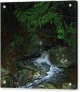 Secret Water Acrylic Print by Jim Thomson