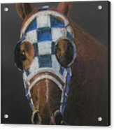 Secretariat - Jewel Of The 1973 Triple Crown Acrylic Print