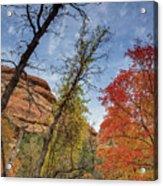 Sedona Fall Colors Acrylic Print