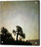 Sedona Landscape Xv Acrylic Print