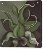 Seed Acrylic Print