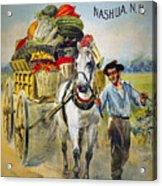 Seed Company Poster, C1880 Acrylic Print