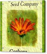 Seed Packet -- Gerbera Daisies Acrylic Print