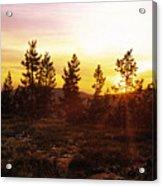 Selway Wilderness Acrylic Print
