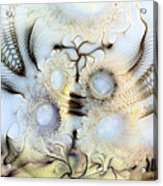 Sensorial Paroxysm Acrylic Print by Casey Kotas