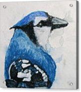Sentimental Blue Acrylic Print