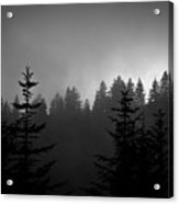 Sentinels In The Mist Acrylic Print