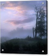 Sentinels In The Valley Acrylic Print
