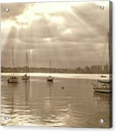 Sepia And Sunbeams Acrylic Print