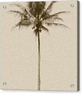 Sepia Palm I Acrylic Print