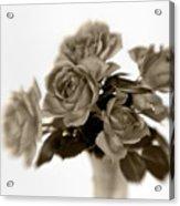 Sepia Roses Acrylic Print