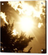 Sepia Sky Acrylic Print