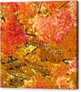 September Leaves Acrylic Print