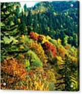 September Mountainside Acrylic Print