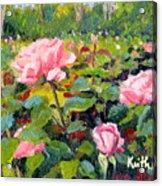 September Roses Acrylic Print