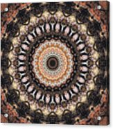 Sequence Of Time Acrylic Print