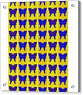 Serendipity Butterflies Brickgoldblue 27 Acrylic Print