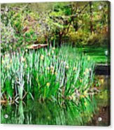 Serene Iris Acrylic Print