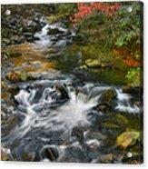 Serene Mountain Stream Acrylic Print