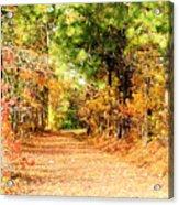 Serene Path Acrylic Print