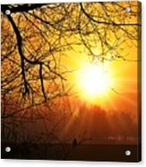 Serenity Dawns Acrylic Print