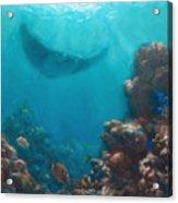 Serenity - Hawaiian Underwater Reef And Manta Ray Acrylic Print
