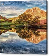 Serenity - Reflection Acrylic Print