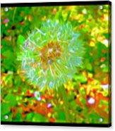 Series Of Spring Time Paintings Acrylic Print