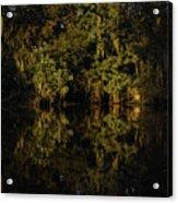 Setting Sun In Maurepas Swamp Acrylic Print