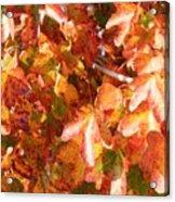 Seurat-like Fall Leaves Acrylic Print