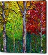 Sewp Fall Acrylic Print