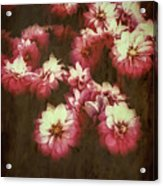 Shabby Chic Floral Design Acrylic Print