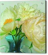 Beautiful Peony Flowers  In Blue Vase. Acrylic Print