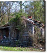 Shack In The Wood Acrylic Print