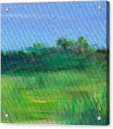 Shaded Meadow Acrylic Print