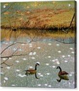 Shades Of Seasons Past Acrylic Print by Jan Amiss Photography