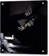 Shadow Art Acrylic Print