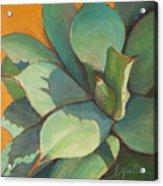 Shadow Dance 1 Acrylic Print by Athena  Mantle