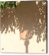Shadow Of A Lamp And Bushes In Venice Acrylic Print