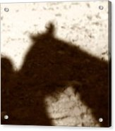 Shadow Of Horse And Girl Acrylic Print