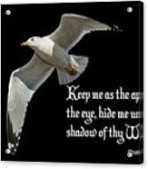 Shadow Of Thy Wings Acrylic Print