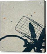 Shadow On The Beach Acrylic Print