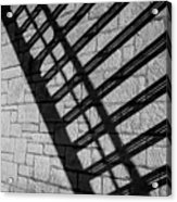 Shadow Play 2 Acrylic Print