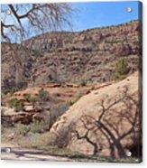 Shadow Tree Dominguez-escalante Canyon Colorado Acrylic Print