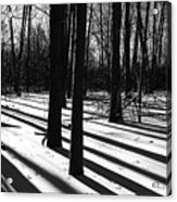 Shadows And Tracks Acrylic Print