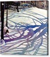 Shadows Dancing Acrylic Print