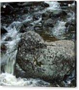 Shady Stream Boulder Acrylic Print